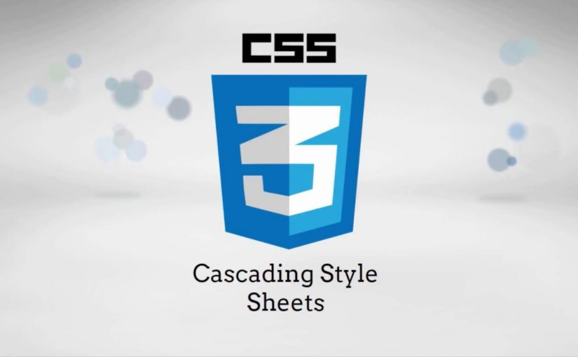 The Fundamentals of Web Development: CSS3