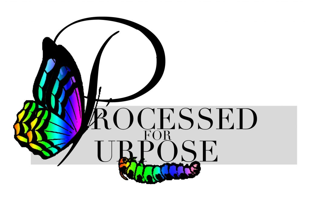 Processed For Purpose Website Intro