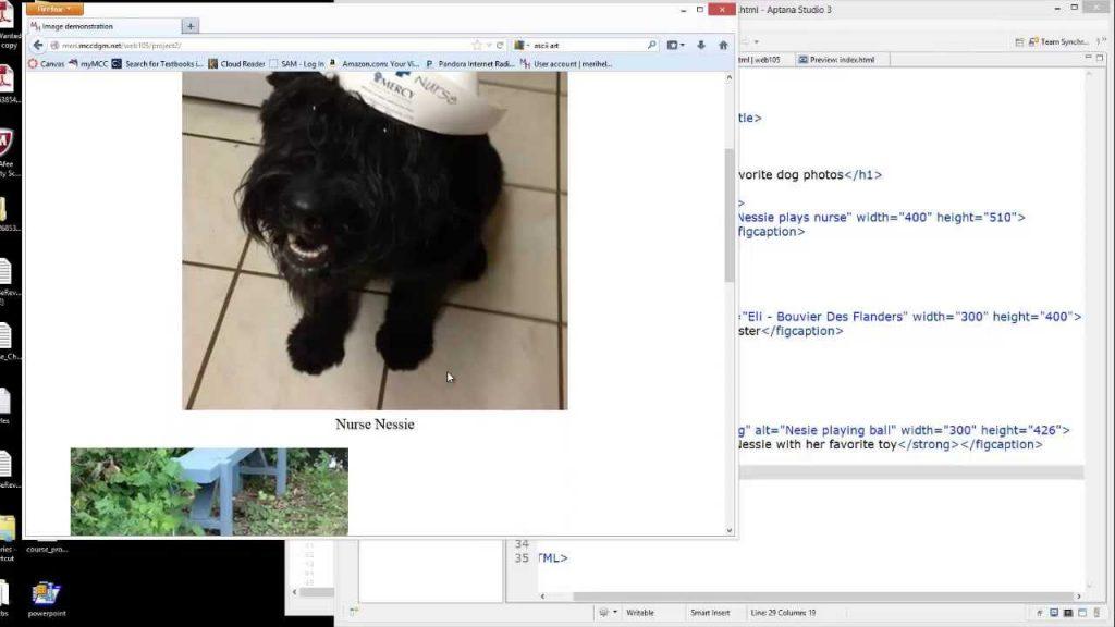 Web Fundamentals: HTML project 2 – images